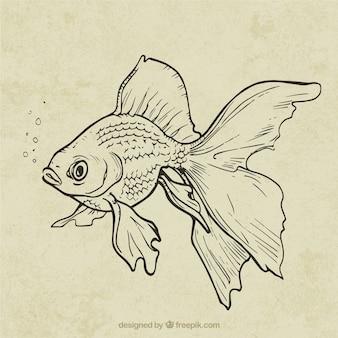 Mão peixe desenhada