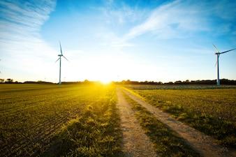Moinhos de vento no campo ao pôr do sol.