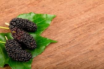 Mulberry e folha na madeira velha