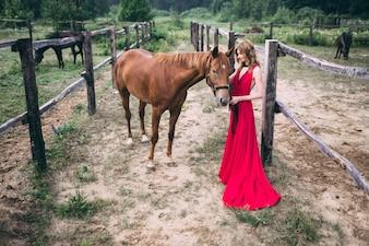 Mulher que toca a cabeça de um cavalo