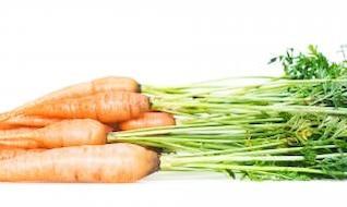 nutriente alimentar cenoura