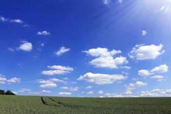 O céu, a natureza ea luz do sol
