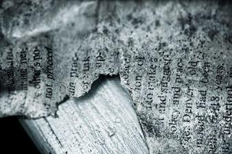 Texto do Antigo