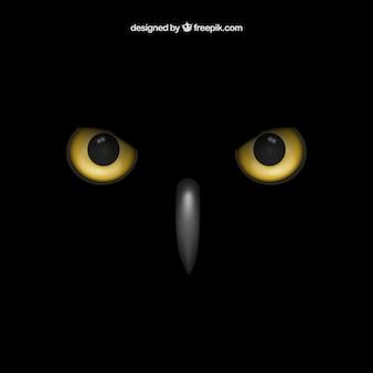 Olhos de coruja