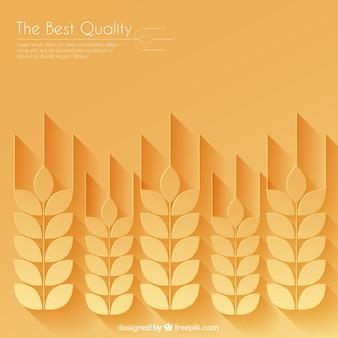 Orelhas do trigo fundo