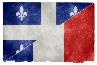 Orgulho da língua francesa da bandeira do grunge