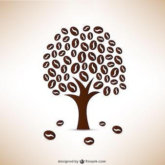 Os grãos de café árvore