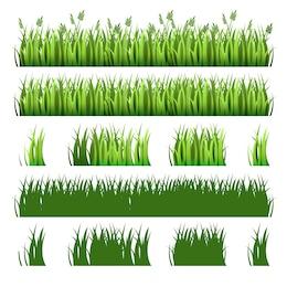 Pacote de grama verde
