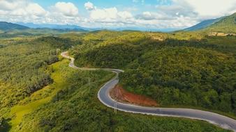 País de trânsito paisagem florestal prado