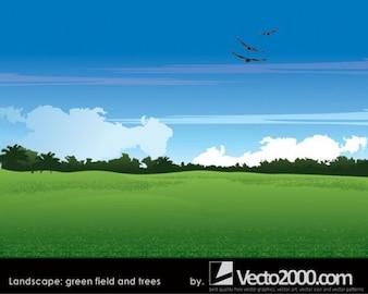 paisagem. campo verde e árvores