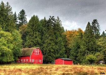 paisagem, céu celeiro árvores campo nuvens natureza