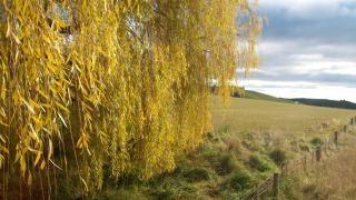 Paisagem da Nova Zelândia no inverno, newzealand
