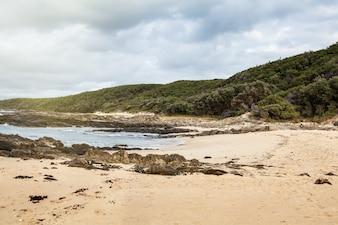 Paisagem em Cape Conran com floresta e praia, Austrália.