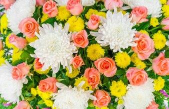 Paixão fragrância belo presente fresco