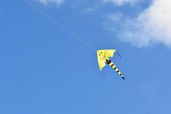 Papagaio voando no belo dia ventoso do outono. Fundo do céu azul com sol e nuvens.