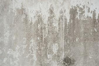 Parede do cimento com uma mancha branca