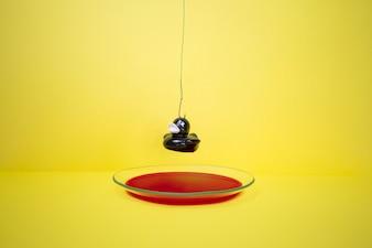 Pato preto sobre o prato com sangue