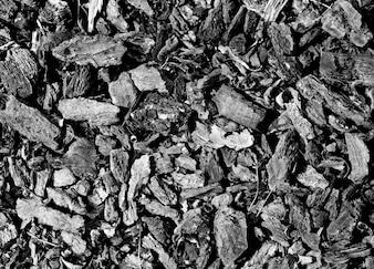 Pedaços de carvão textura