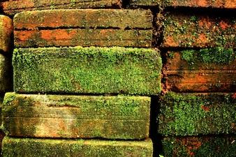 Pedra de concreto papel de parede marrom vermelho