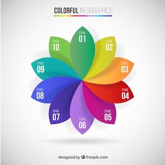 Pétalas coloridas infográfico