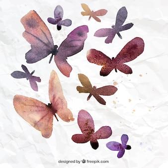 Pintados à mão borboletas