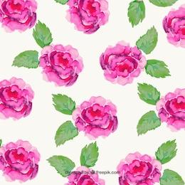 Pintados à mão flores rosa