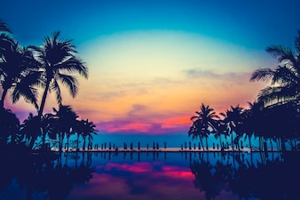 Piscina nave palma oceano paisagem