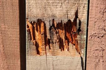 Placa antiga parede ferrugem madeira