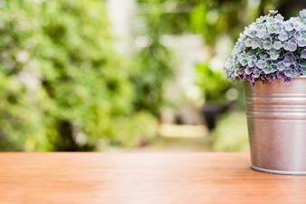 Planta verde em um potenciômetro de flor em uma mesa de madeira na frente da casa com o fundo borrado da textura do jardim.