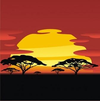 Por do sol africano com silhuetas de árvores