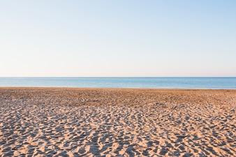 Praia vazia com pequenas dunas