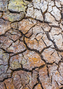Rachado, argila, chão, seca, terra, fundo