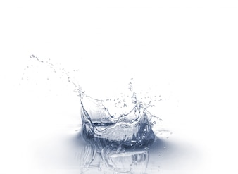 Respingo de água isolado no fundo branco