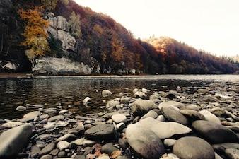 Rio com pedras visto a partir do solo