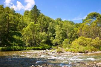 Rio das montanhas no dia ensolarado