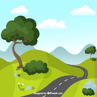 Estrada passando por campo verde