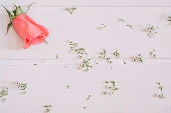 Rosa de salmão no canto superior esquerdo e pequenas flores na mesa branca