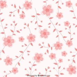 Rosa floresce o fundo