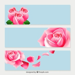 Rosas cor de rosa banners