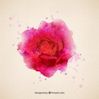 Rose no estilo da aguarela