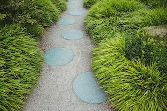 Stepping caminho de pedra do jardim