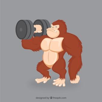 Strong gorila