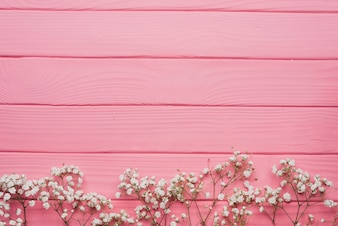 Superfície de madeira rosa com galhos decorativos