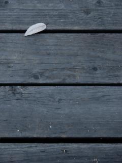 Tábuas de madeira escura