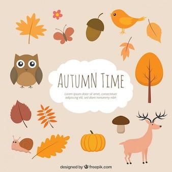 Tempo do outono