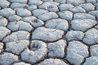 Terra seca, textura rachada