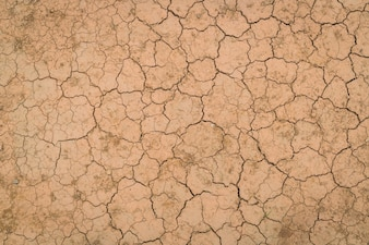 Textura à terra seca e rachada.