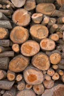 Textura de madeira toras hdr