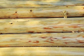 Toras de madeira sem casca
