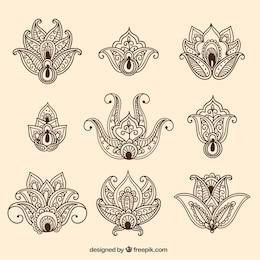 Variedade de flores ornamentais
